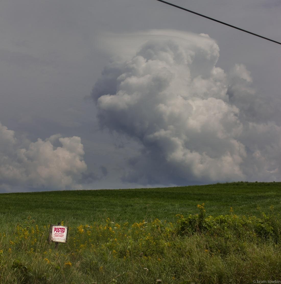 posed sign field huge cloud in bg.jpg