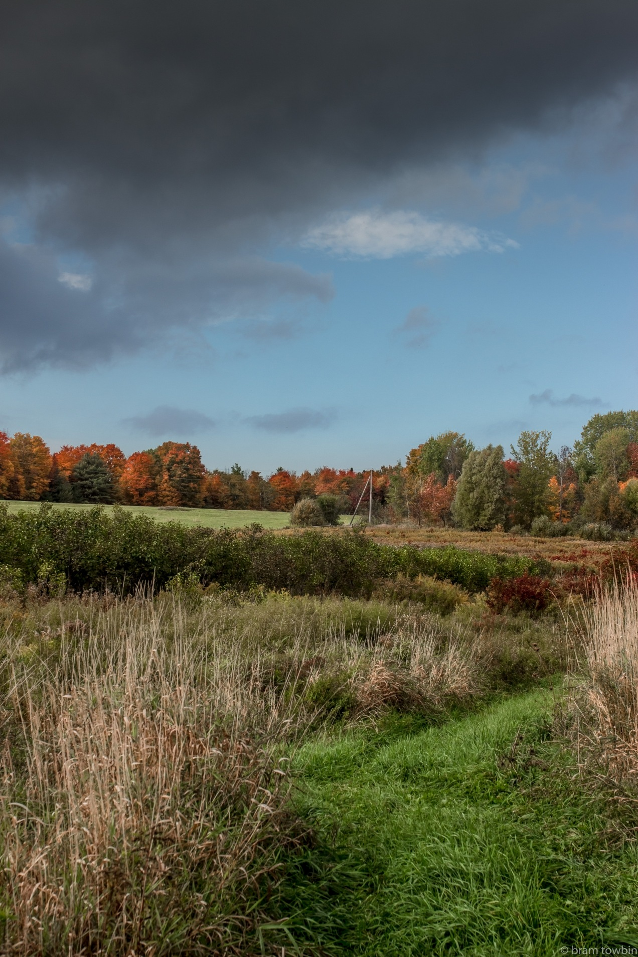 looking out over p0 fall foliage_.jpg